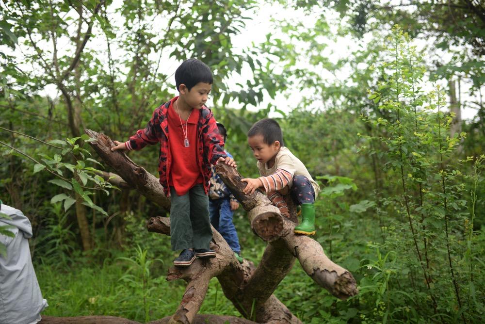 Môn học khám phá thiên nhiên tại Lớp tiền tiểu học theo phương pháp giáo dục Steiner